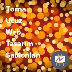 torna-ucuz-web-tasarim-sablonlari.jpg